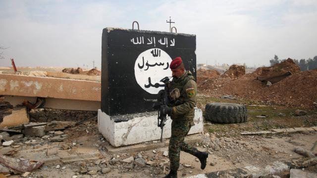 irak-et-syrie-daech-perdu-23-des-ses-territoires